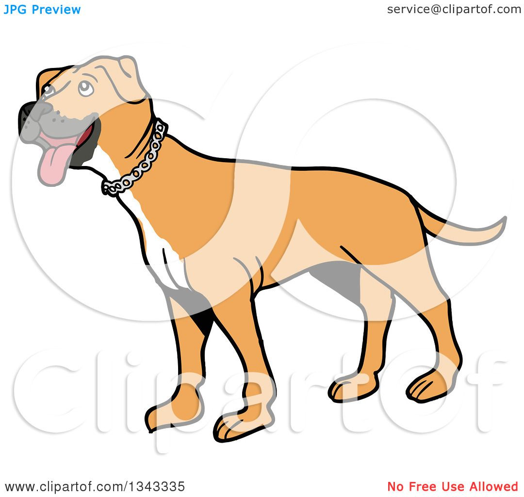Clipart of a Cartoon Tan Pitbull Dog Standing and Panting, Facing ...