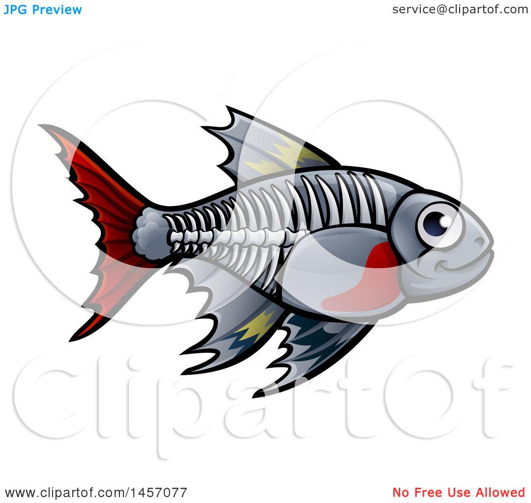 clipart of a cartoon x ray tetra freshwater fish royalty free