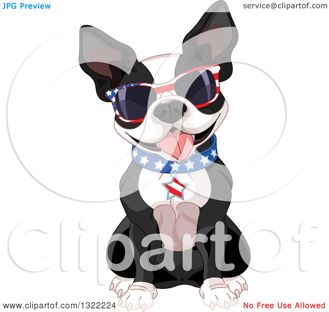 Clipart of a Cute American Patriotic Boston Terrier Dog Sitting ...