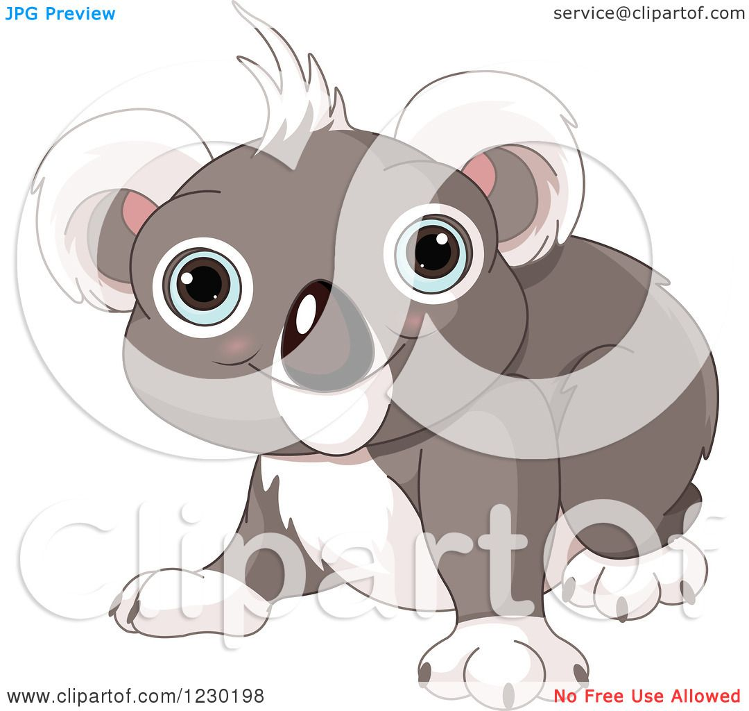 clipart of a cute baby koala smiling royalty free vector
