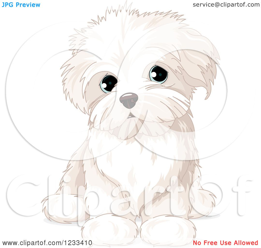 maltese dog clipart - photo #34