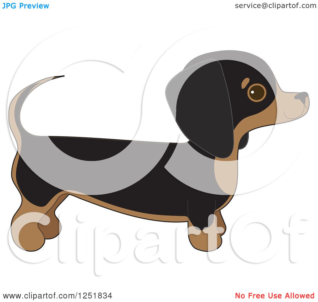 Clipart Of A Cute Dachshund Dog In Profile Royalty Free
