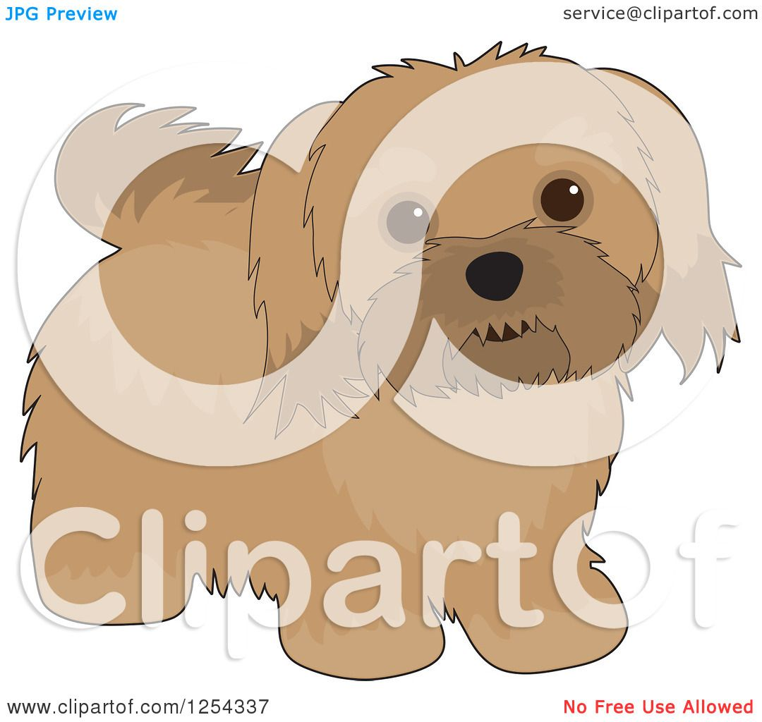 Clipart of a Cute Havanese Dog - Royalty Free Vector ...
