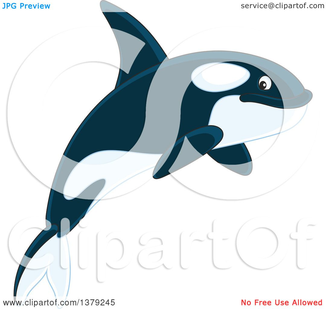 Clipart of a Cute Jumping Orca Killer Whale - Royalty Free Vector ...
