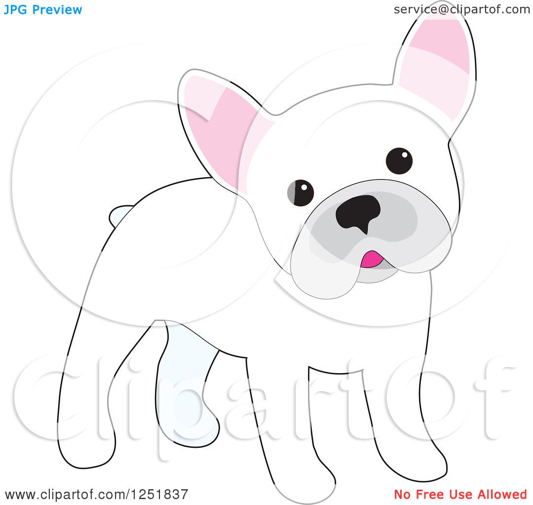 40df2a71fb3f Clipart of a Cute White French Bulldog Cocking Its Head - Royalty Free  Vector Illustration by