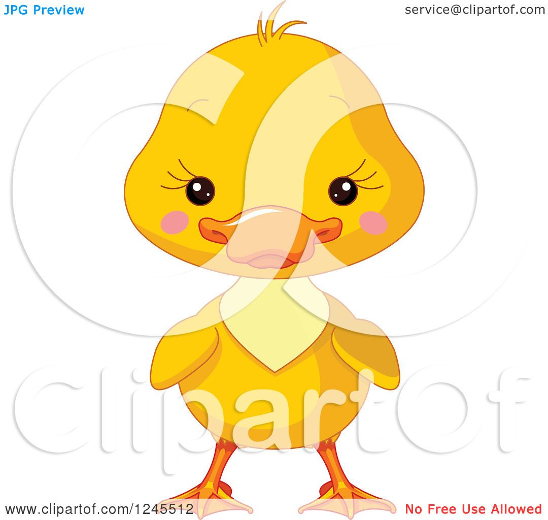 Cute yellow duckling