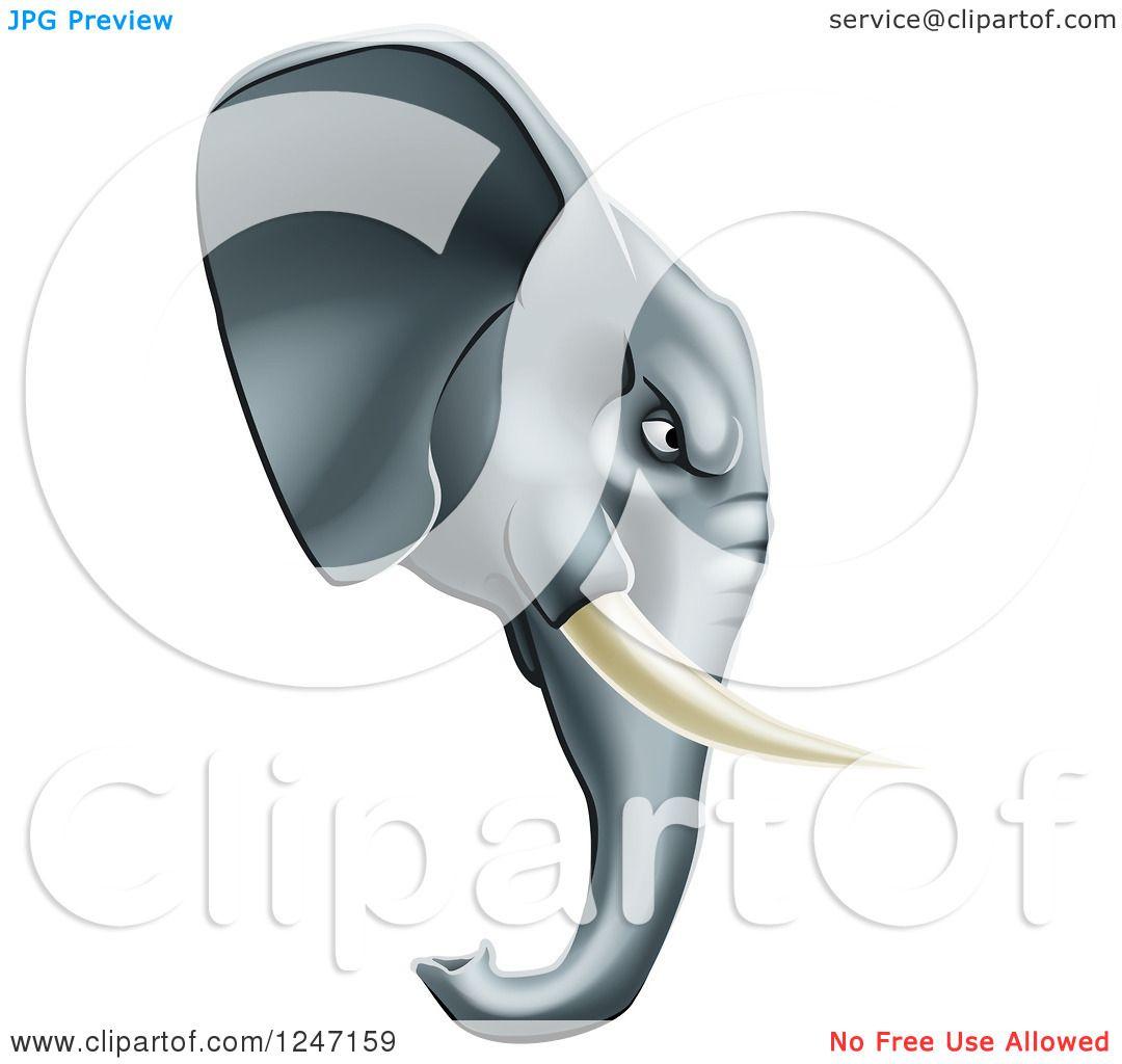 Clipart of a Fierce Elephant Mascot Head in Profile ...