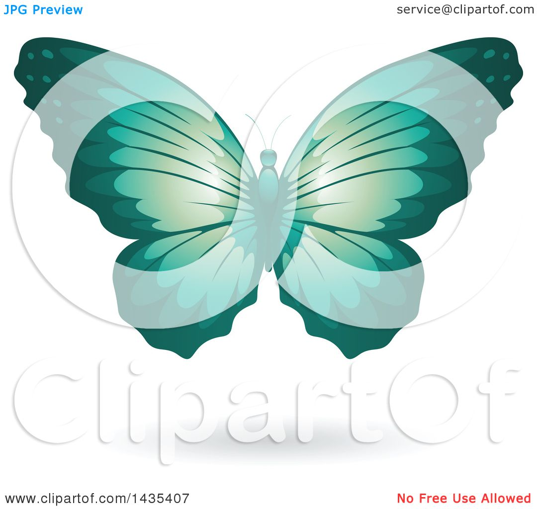 clipart of a flying turquoise butterfly and shadow