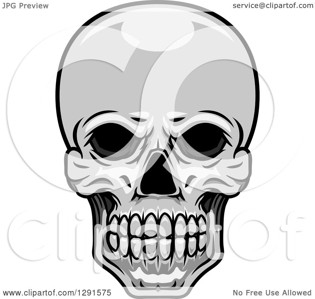 Clipart Of A Grayscale Human Skull Royalty Free Vector