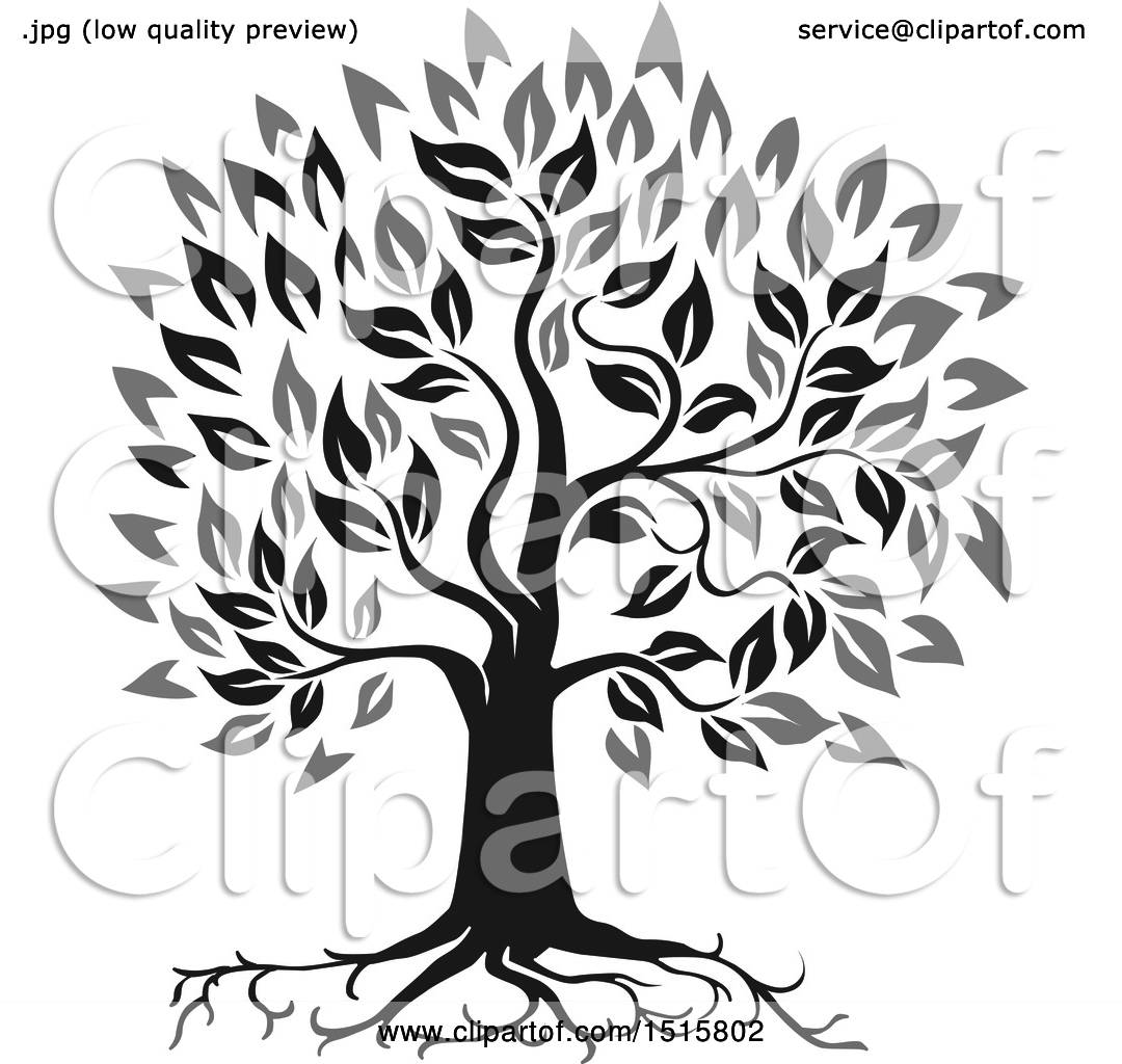f7eca0d69 Clipart of a Grayscale Oak Tree with Roots and Leaves - Royalty Free Vector  Illustration by