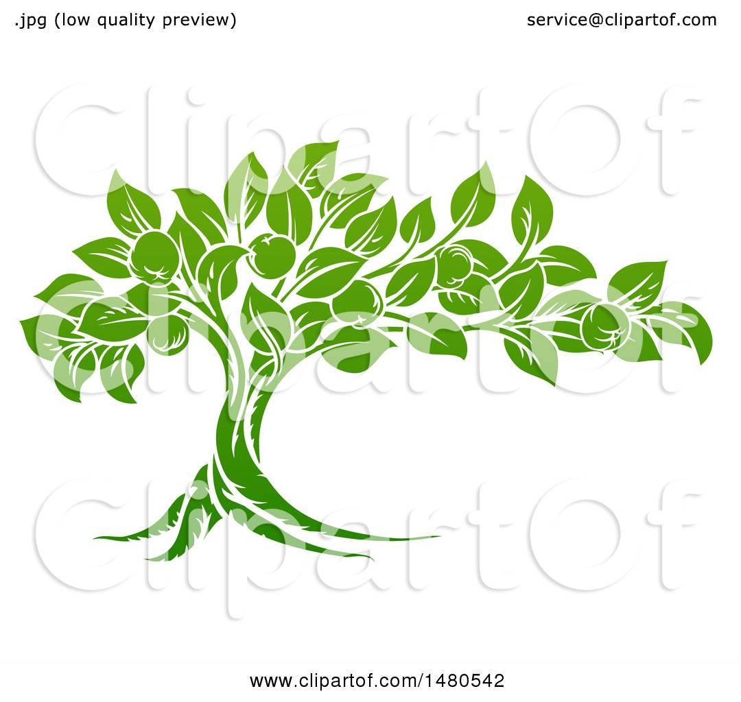 Clipart of a Green Apple Tree - Royalty Free Vector Illustration by ...