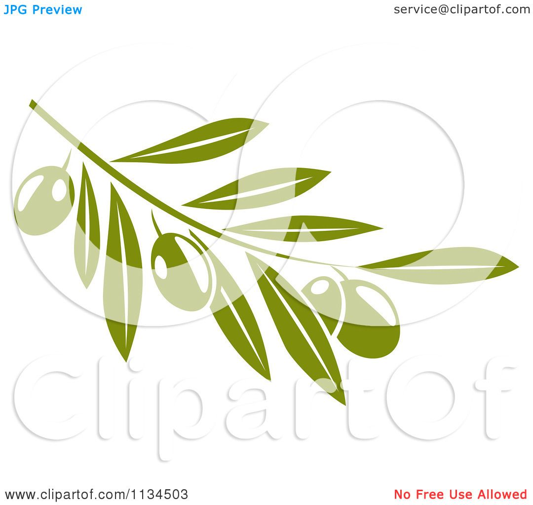 Clipart Of A Green Olive Branch 2 - Royalty Free Vector Illustration ...