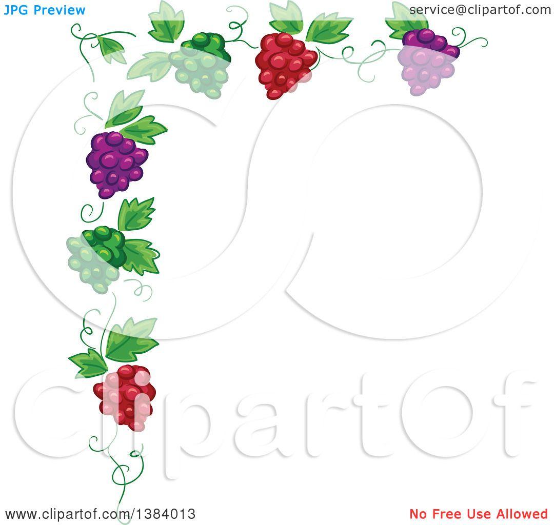 Clipart of a Green, Red and Purple Grape Vine Corner Border ...