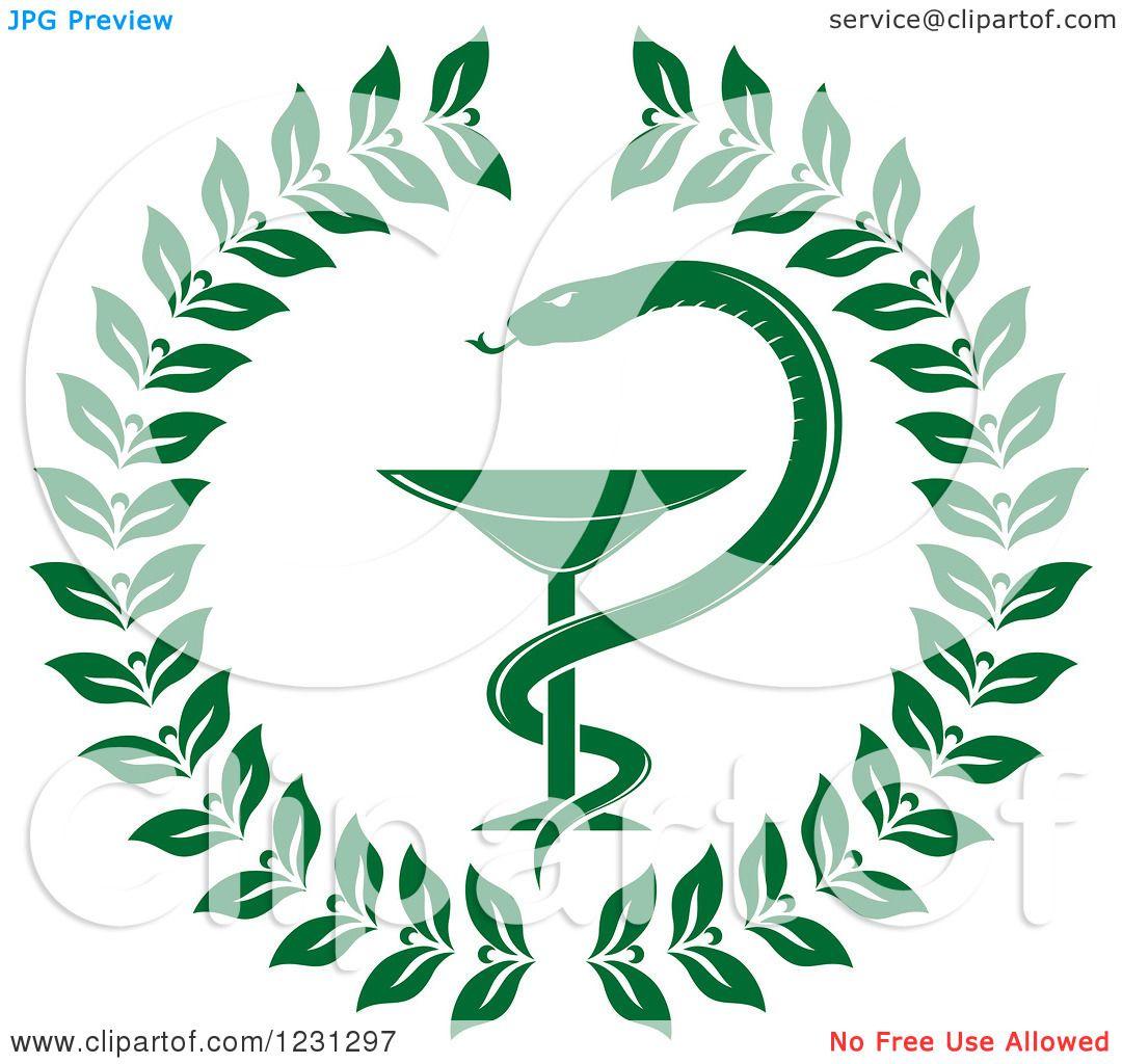 clipart of a green snake and medical caduceus with a wreath rh clipartof com Dental Caduceus Symbol Dental Symbols Clip Art