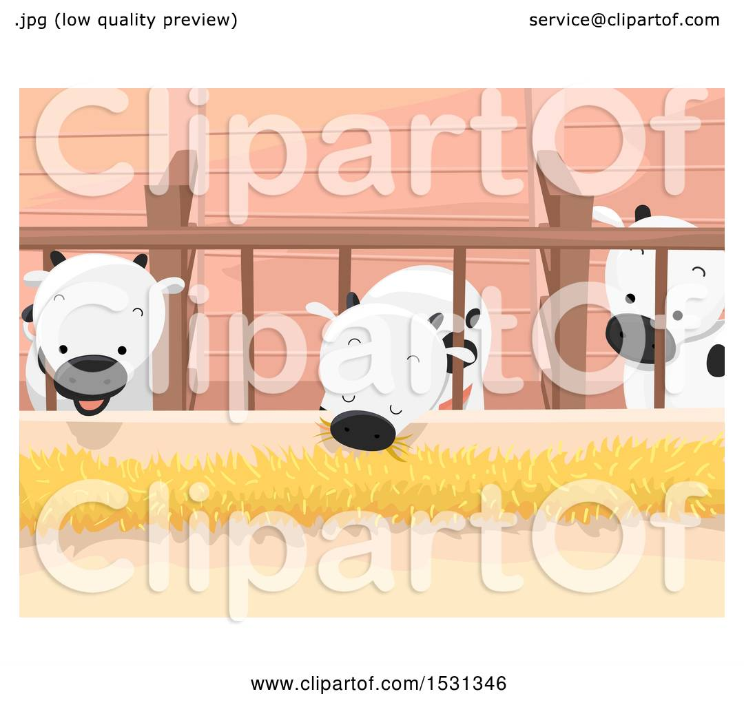 Clipart Of A Group Cows Eating Hay Inside Barn