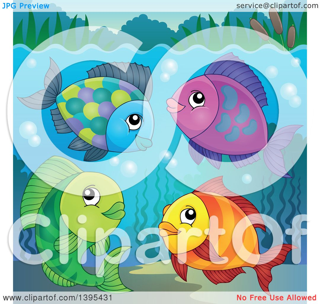 Freshwater fish clipart - Clipart Of A Group Of Freshwater Fish Underwater Royalty Free Vector Illustration By Visekart
