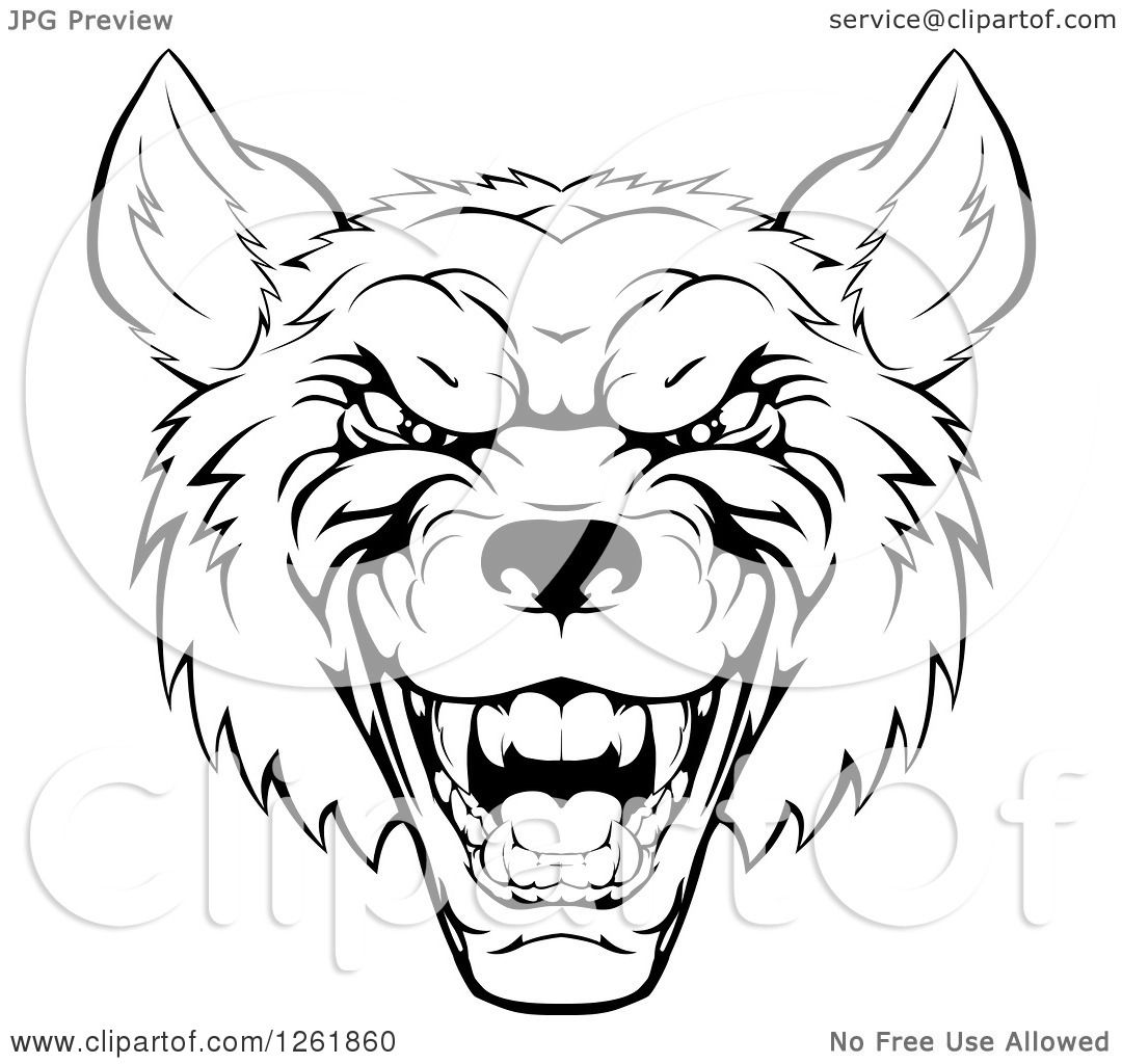 Clipart Of A Growling Black And White Aggressive Wolf Face Royalty Free  Vector Illustration By Atstockillustration How To Draw