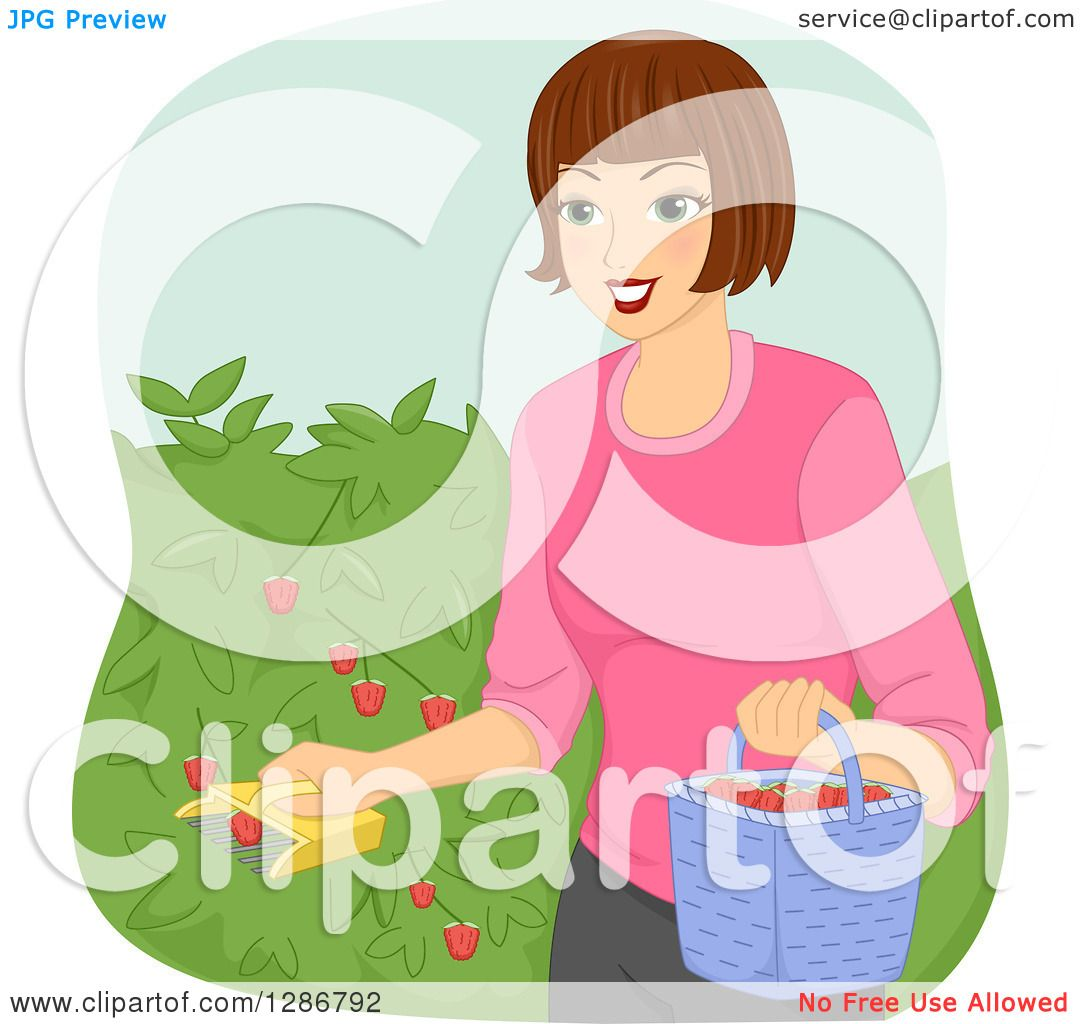 clip art collect