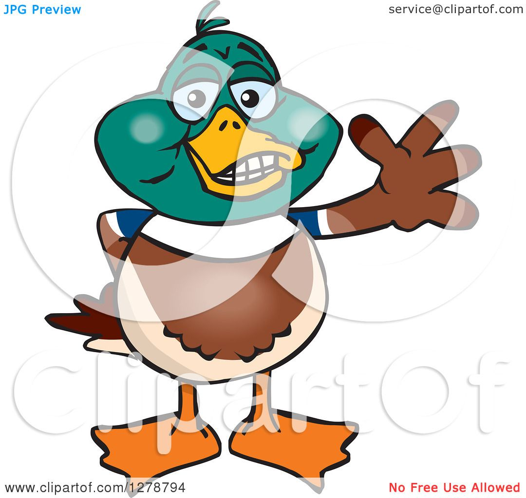 Clipart of a Happy Mallard Drake Duck Waving - Royalty Free Vector ...