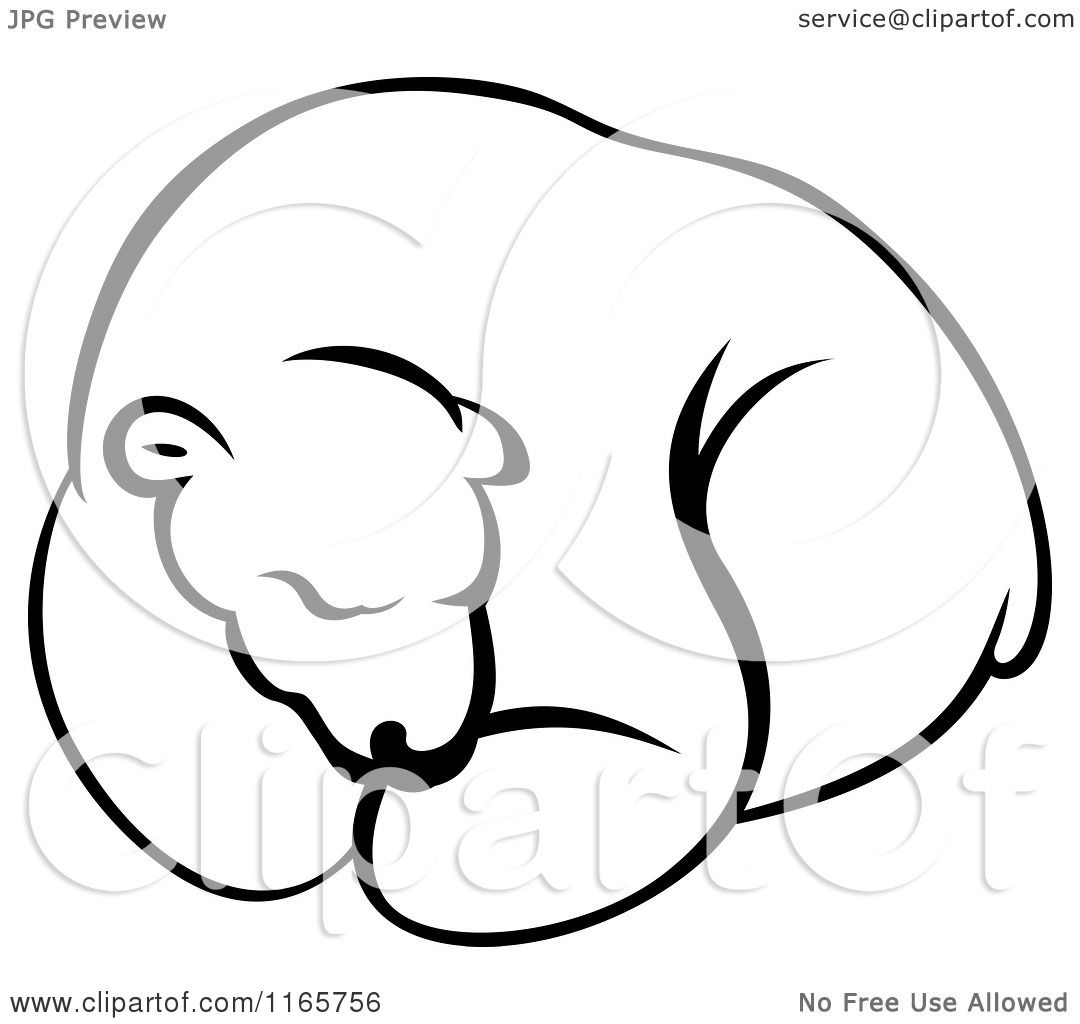 Clipart Of A Hibernating Black And White Bear Royalty