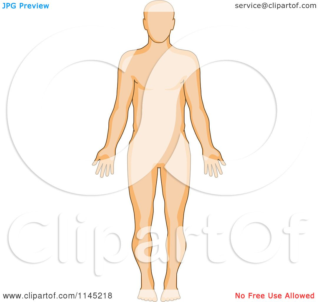 Clipart of a Human Anatomy Man From the Front - Royalty Free Vector ...