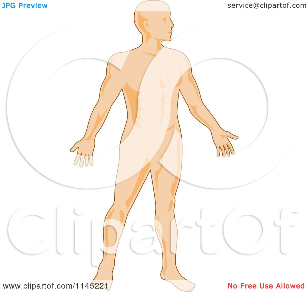 Clipart of a Human Anatomy Man - Royalty Free Vector Illustration by ...