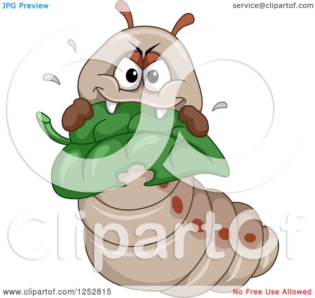 Clipart of a Hungry Caterpillar Eating a Leaf - Royalty Free ...