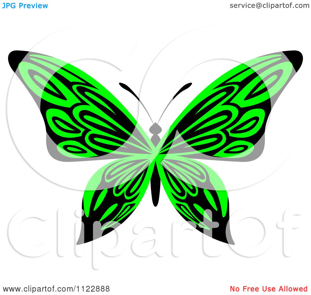 Clipart Of A Lime Green Butterfly - Royalty Free Vector ...