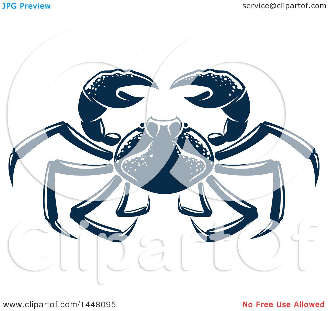 Awesome Blue Crab Internal Anatomy Festooning Physiology Of Human
