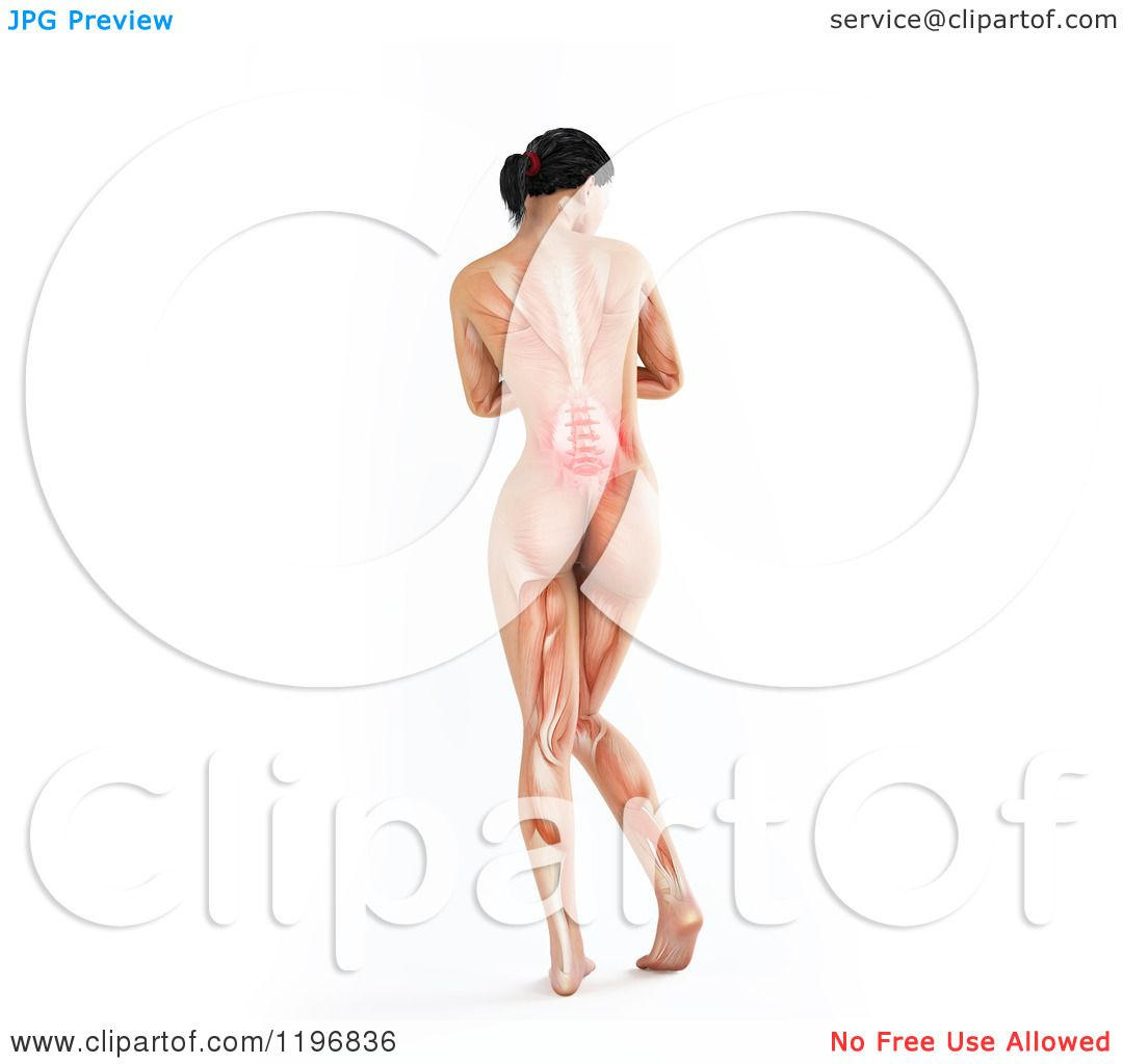 Clipart of a Rear View of a 3d Nude Woman with Visible Lower Back ...
