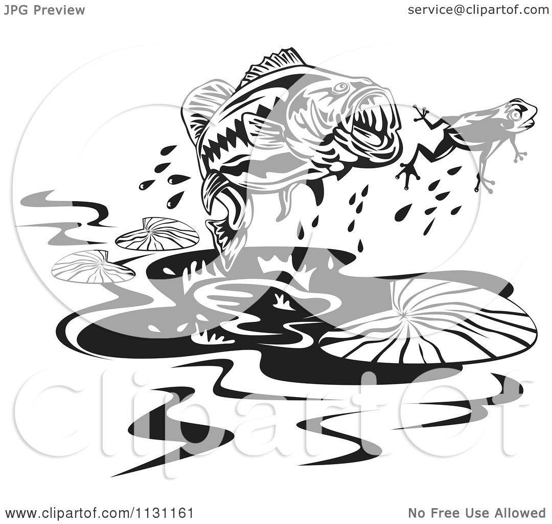 clipart of a retro black and white largemouth bass fish chasing a frog royalty free vector. Black Bedroom Furniture Sets. Home Design Ideas