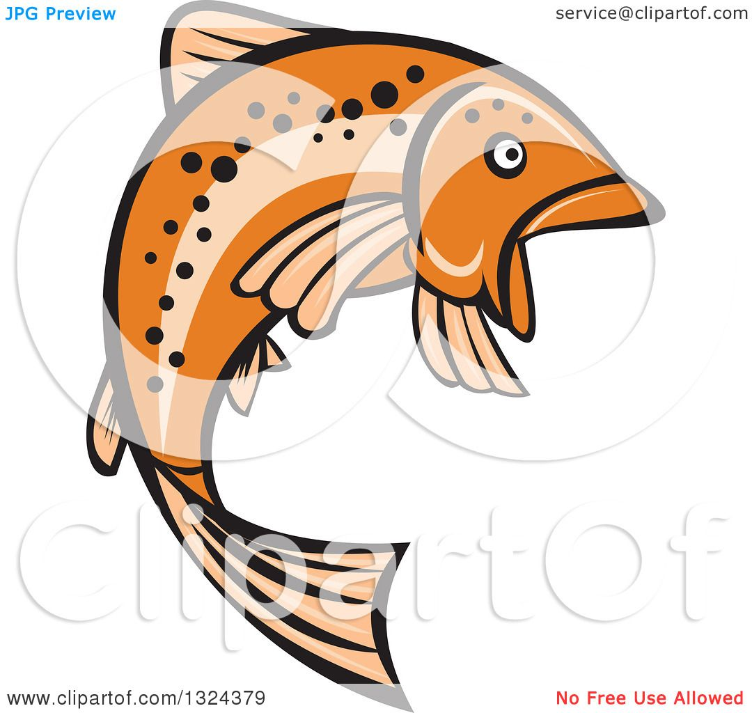 clipart of a retro orange leaping rainbow trout fish royalty