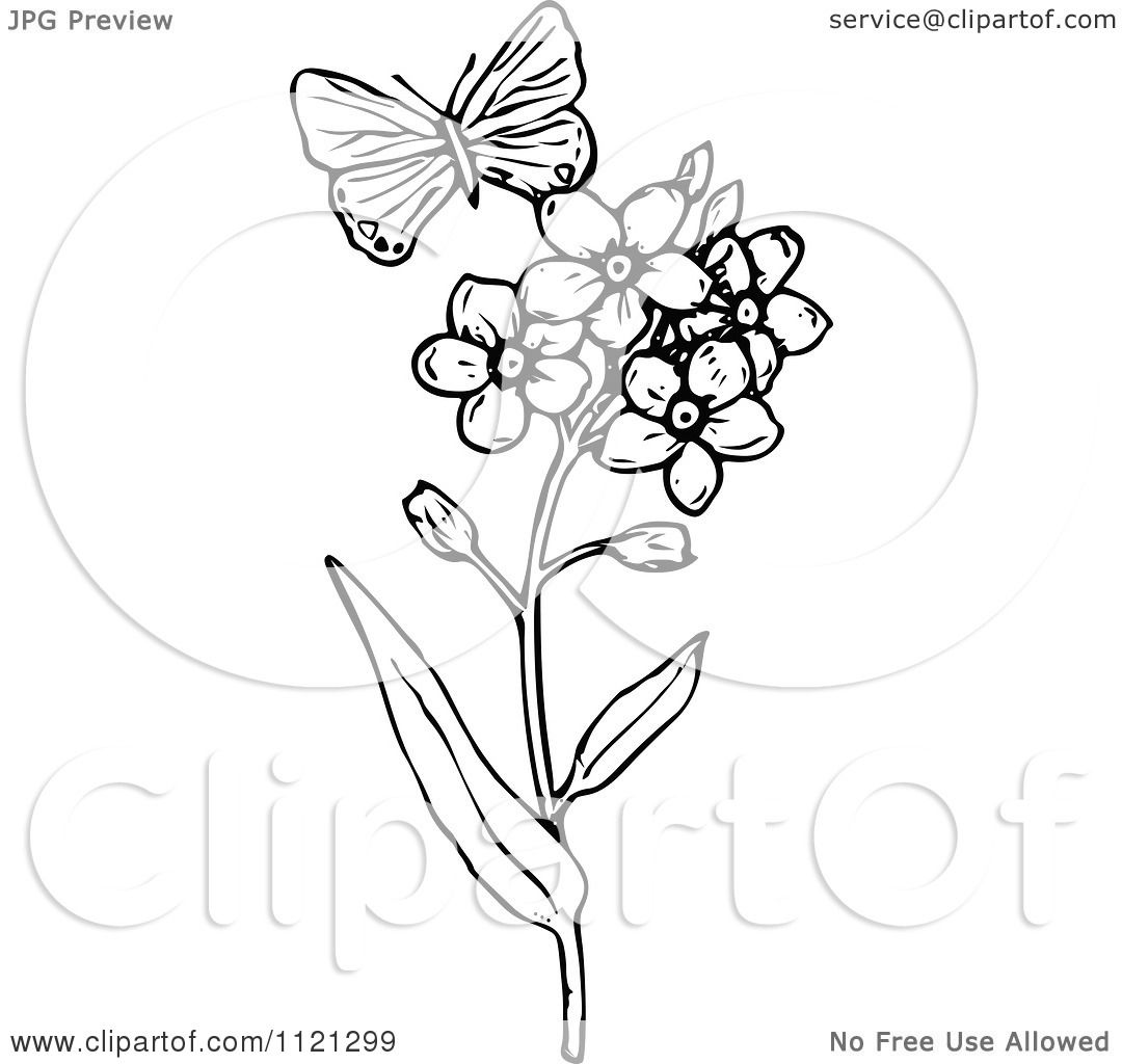Clipart-Of-A-Retro-Vintage-Black-And-White-Butterfly-And-Flowers ...