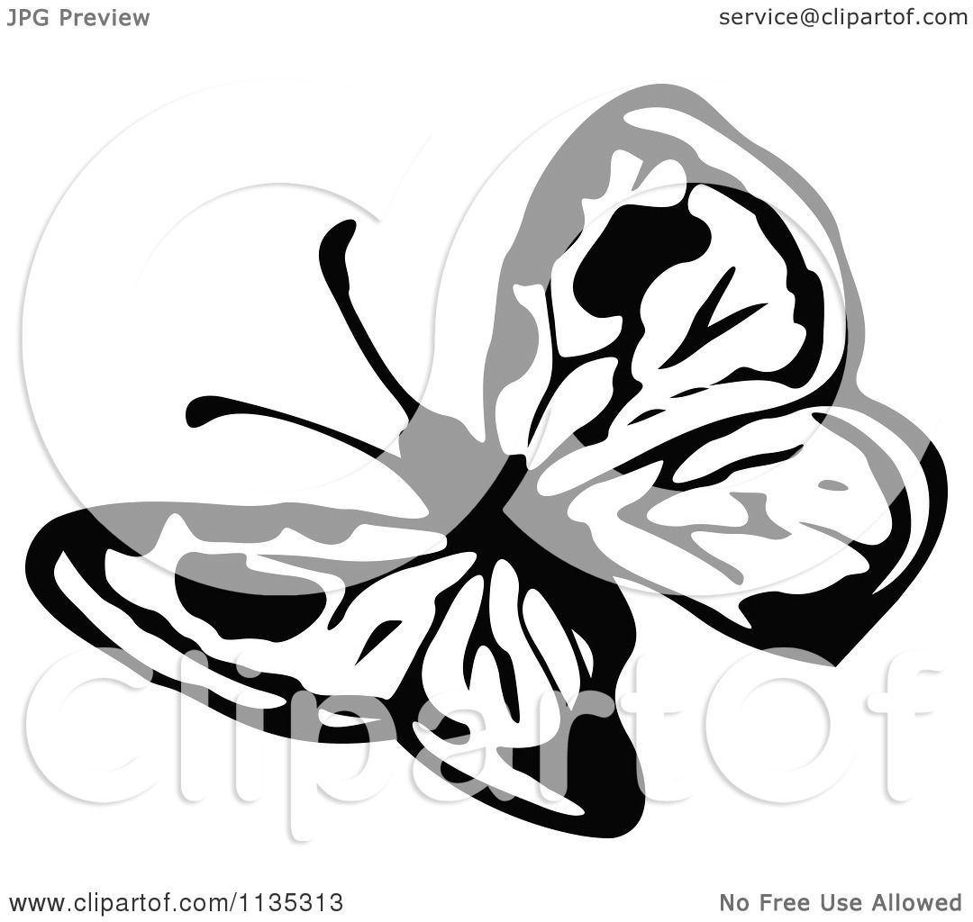 Clipart Of A Retro Vintage Black And White Butterfly - Royalty Free    Vintage Butterfly Black And White