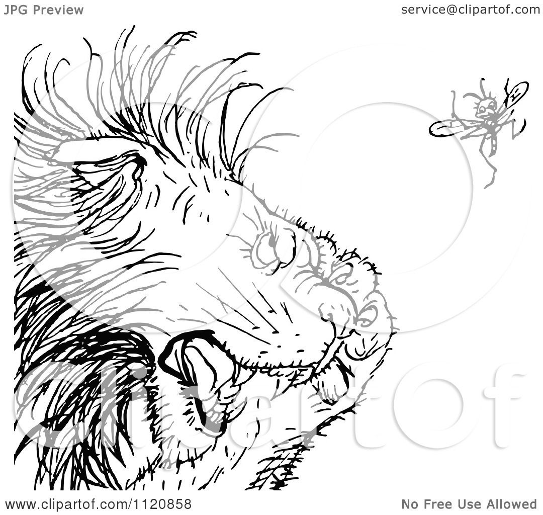 Kerwhizz coloring pages ~ Clipart Of A Retro Vintage Black And White Gnat Annoying A ...
