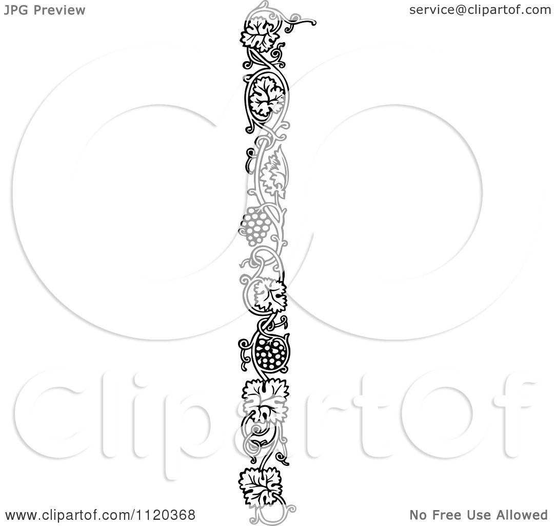 Clipart Of A Retro Vintage Black And White Grape Vine ...
