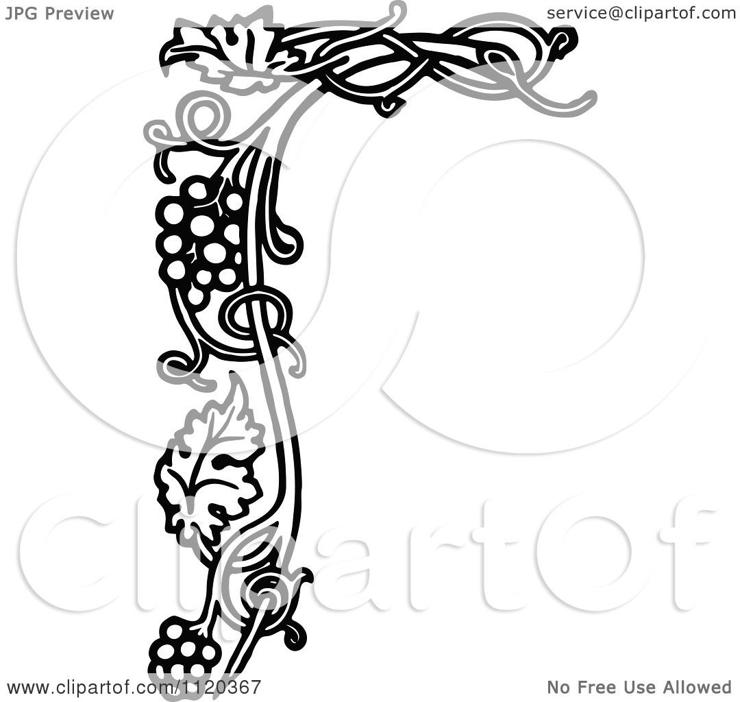 Black And White Capital Vintage Styled Alphabet Letters 1071766 as well Pin And Thread Illustrations By Debbie Smyth moreover File PSM V26 D764 Longitudinal section through the center of the brain also Anatomical heart furthermore Noise Pollution Drawing. on vintage anatomy illustration