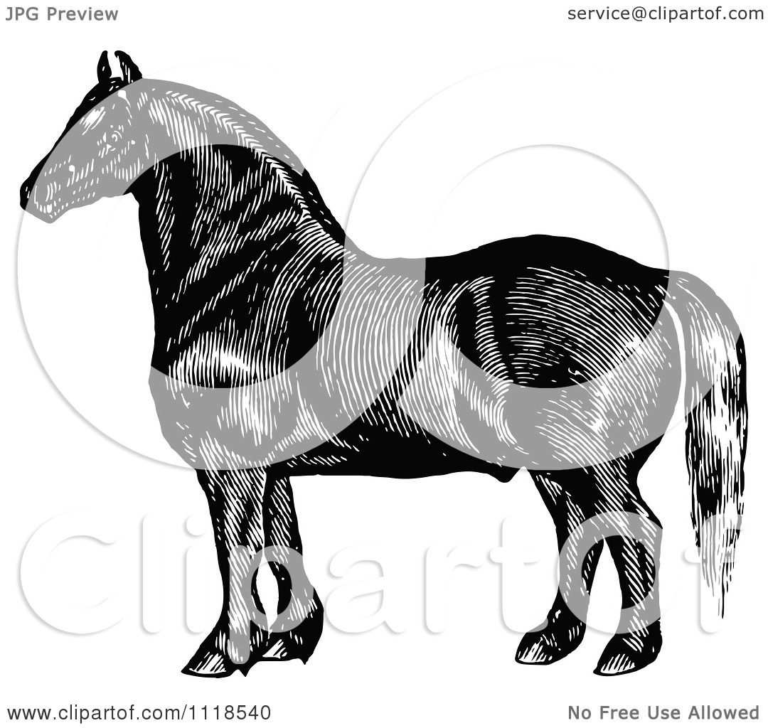 Clipart Of A Retro Vintage Black And White Horse 3 ...