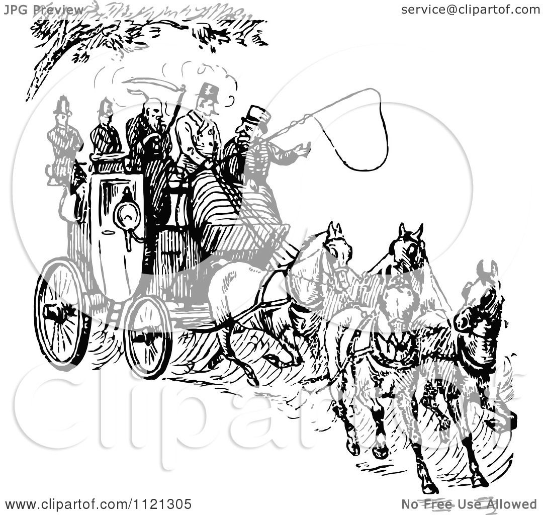 White Horse Carriage White Horse Drawn Carriage