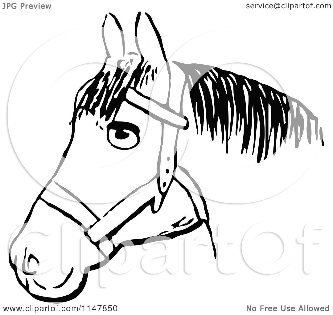 Clipart of a Retro Vintage Black and White Horse Head 2 - Royalty ...