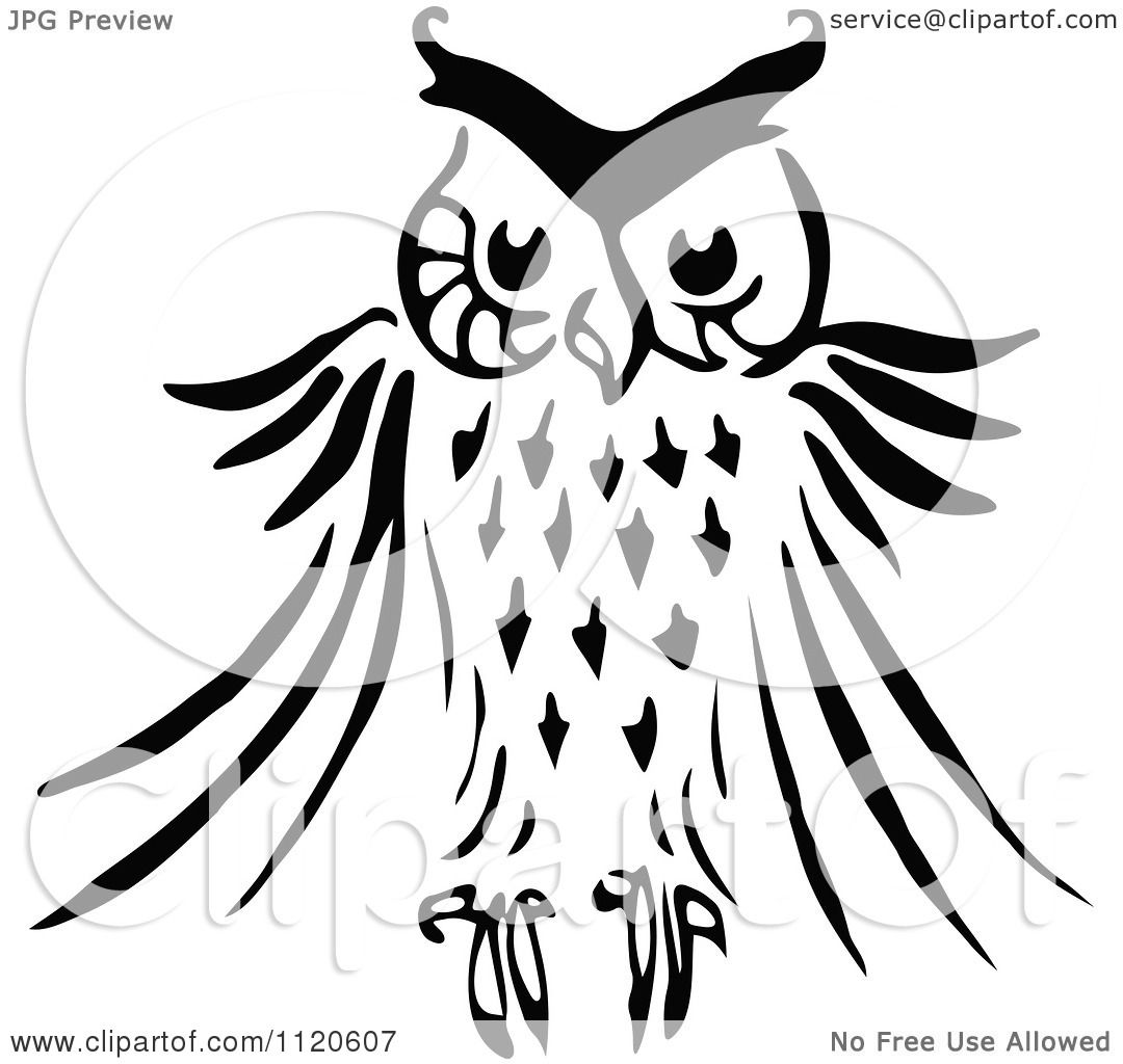Clipart Of A Retro Vintage Black And White Owl - Royalty ...