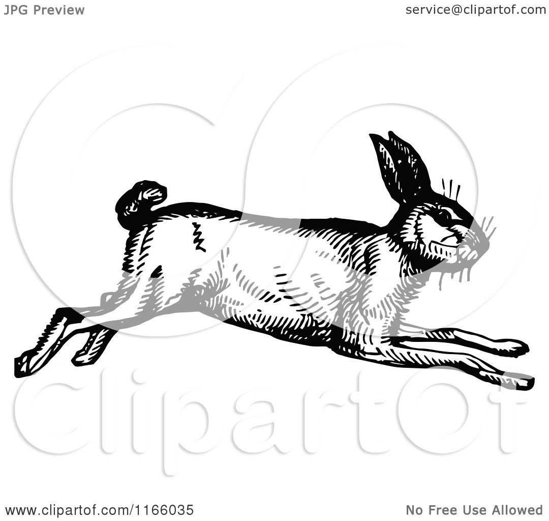 Running Rabbit Drawing