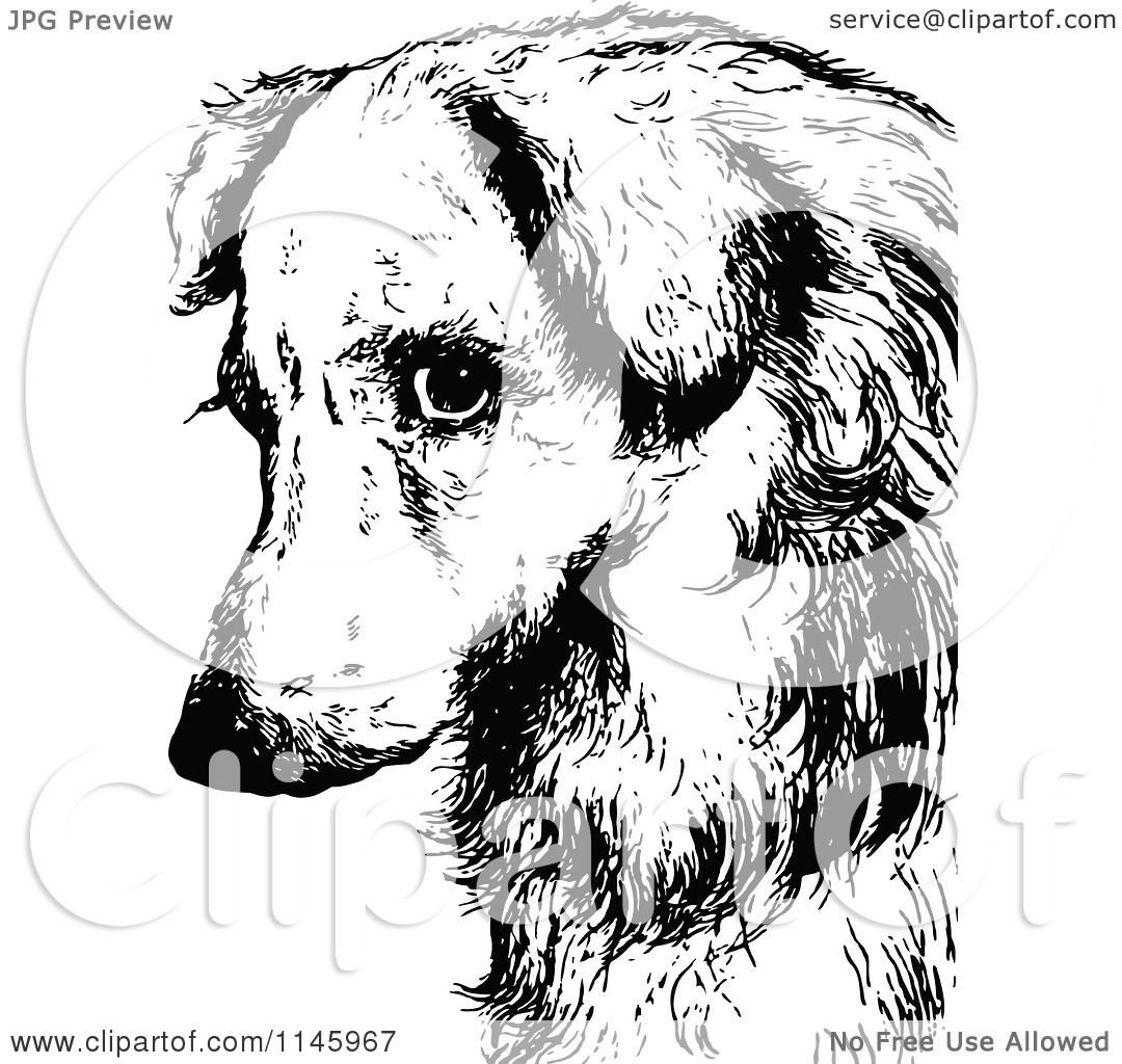 Clipart Of A Retro Vintage Black And White Sad Dog Face
