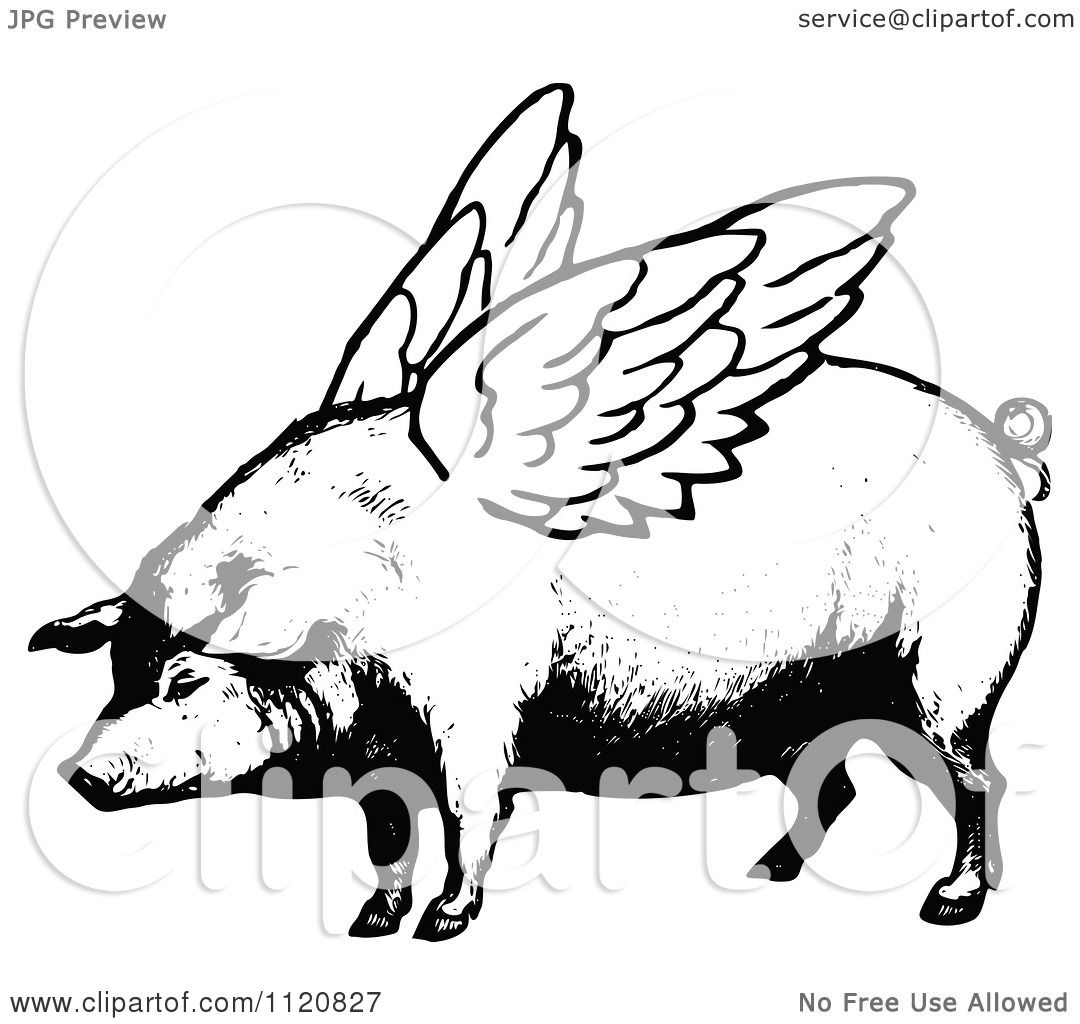 Clipart Of A Retro Vintage Black And White Winged Pig ...