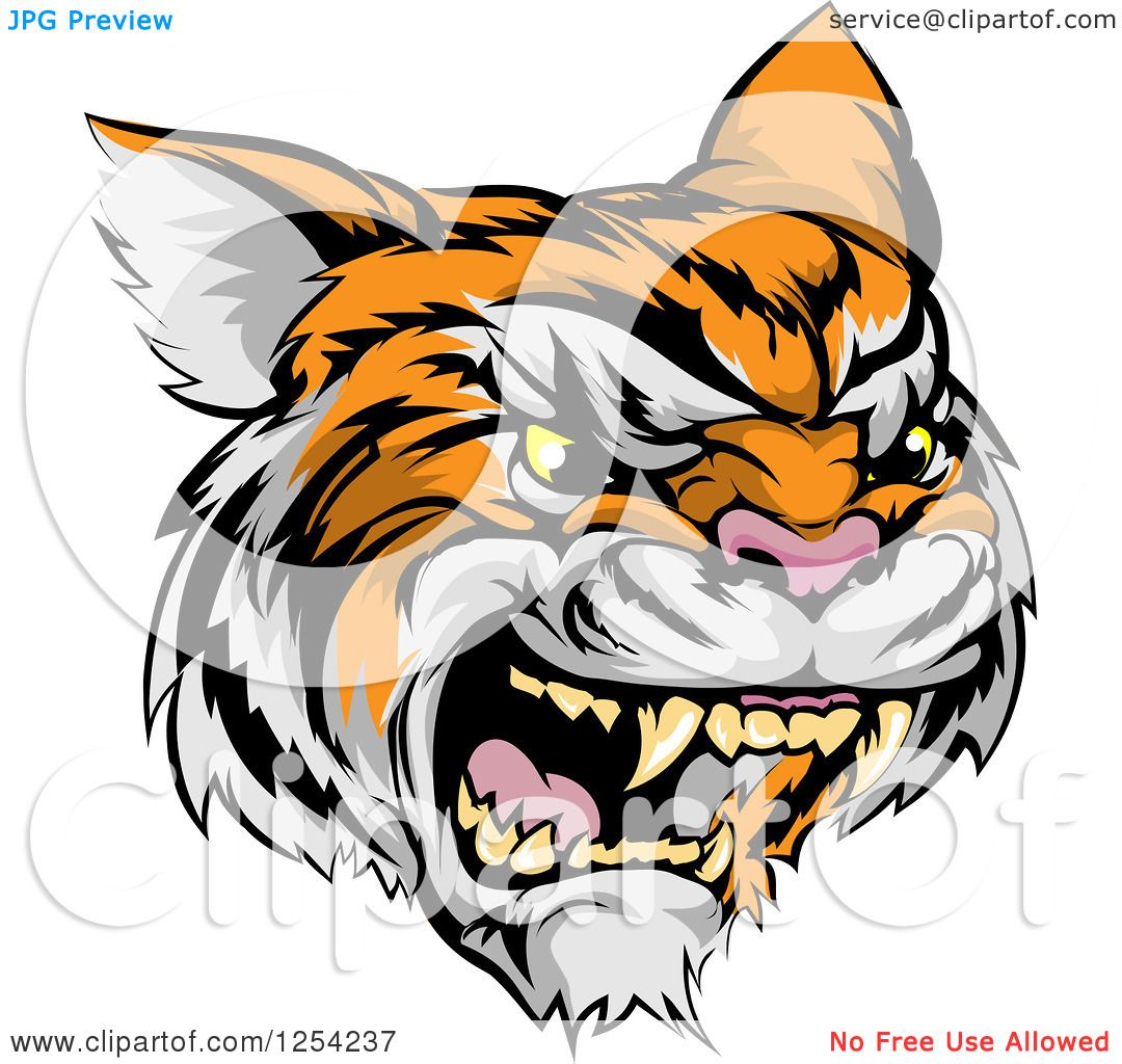 Clipart Of A Roaring Angry Tiger Mascot Head Royalty
