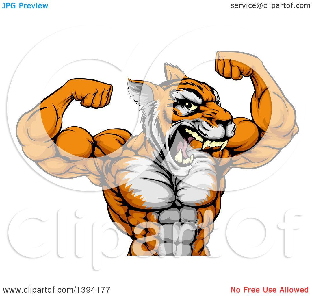 Clipart Of A Roaring Tough Tiger Man Flexing His Big