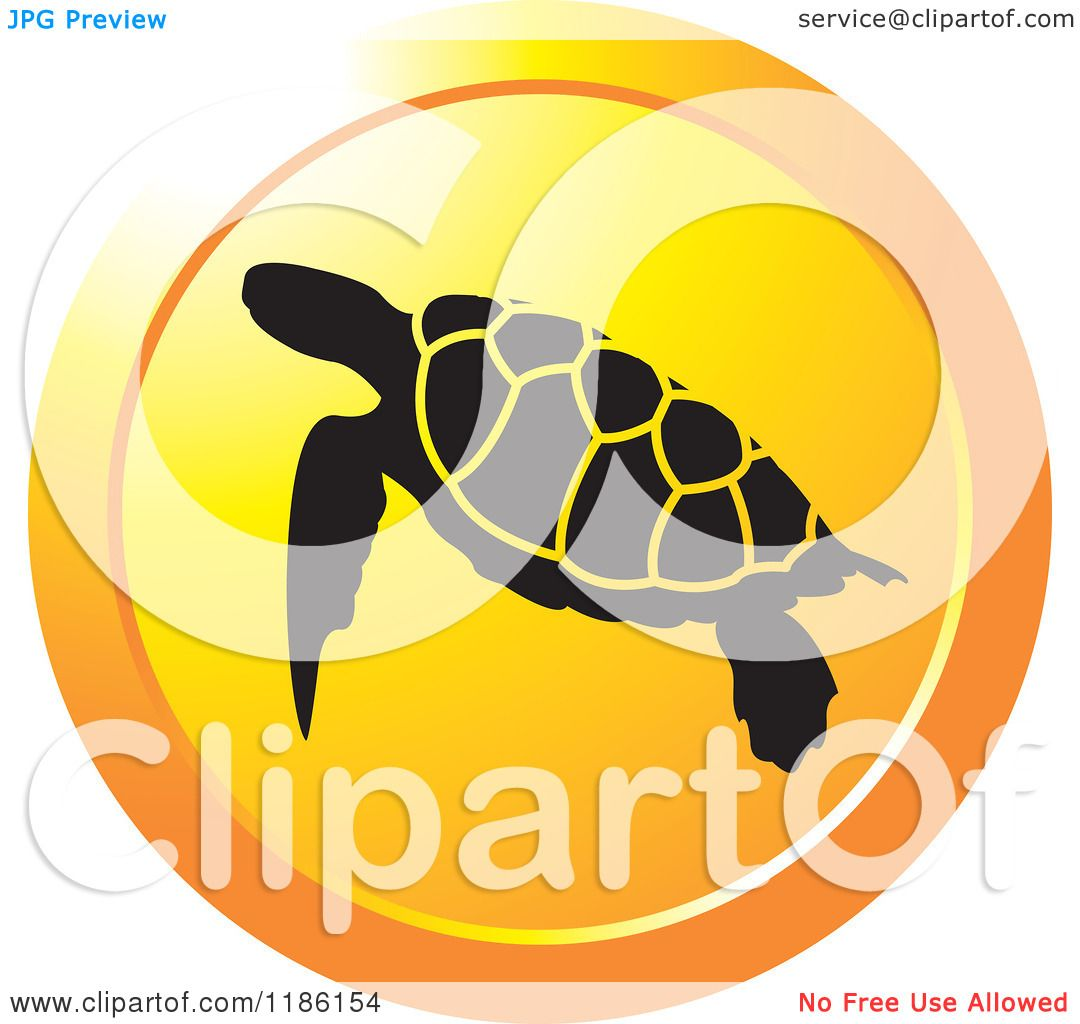 Logo Turtle Computer Free Download Logo Turtle For