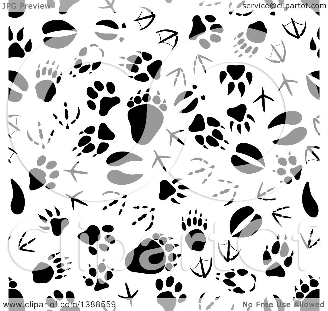 Clipart Seamless Pink Purple And Green Floral Burst: Clipart Of A Seamless Background Pattern Of Black Animal