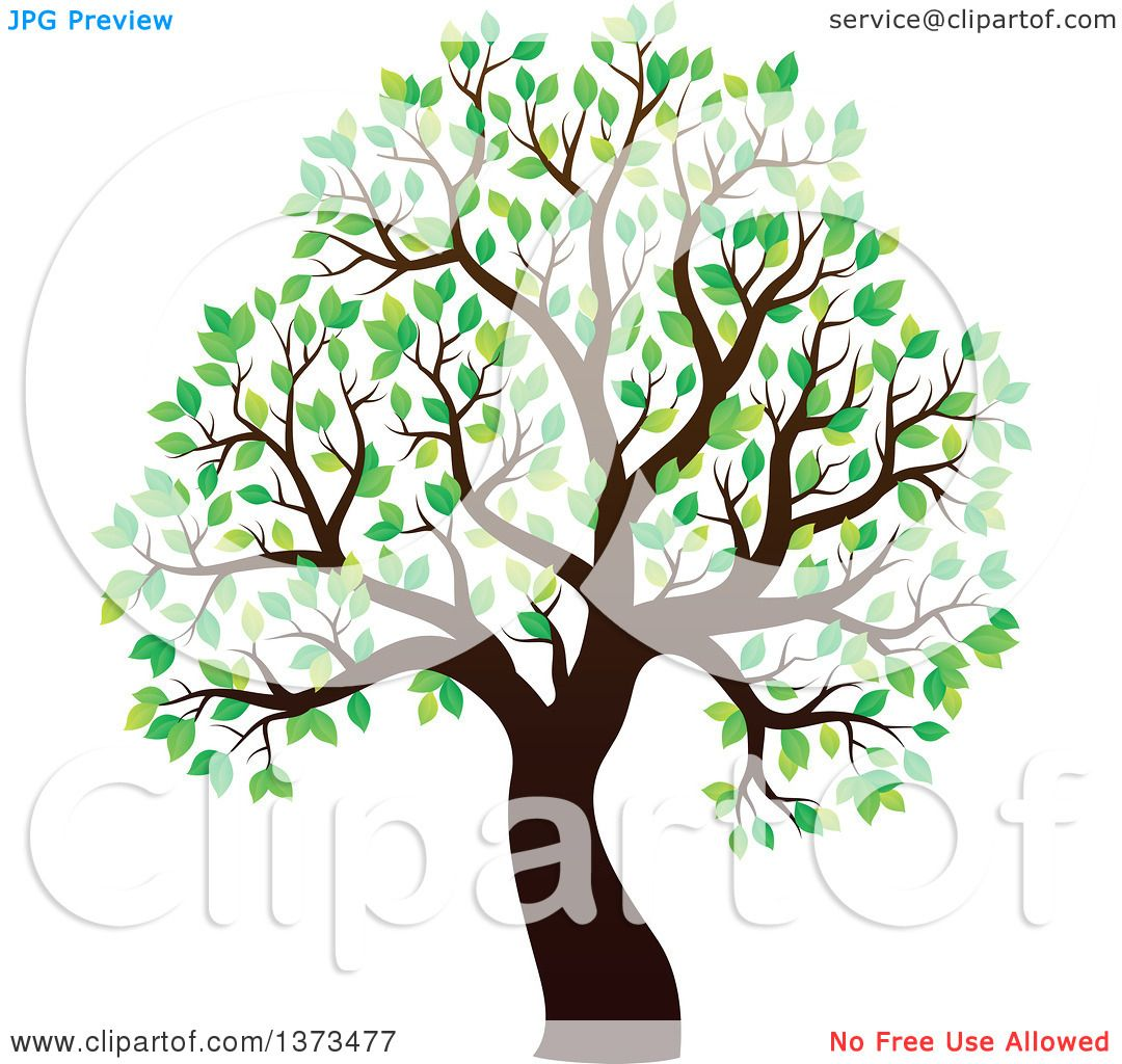 Clipart of a Silhouetted Tree with Green Leaves - Royalty Free ...