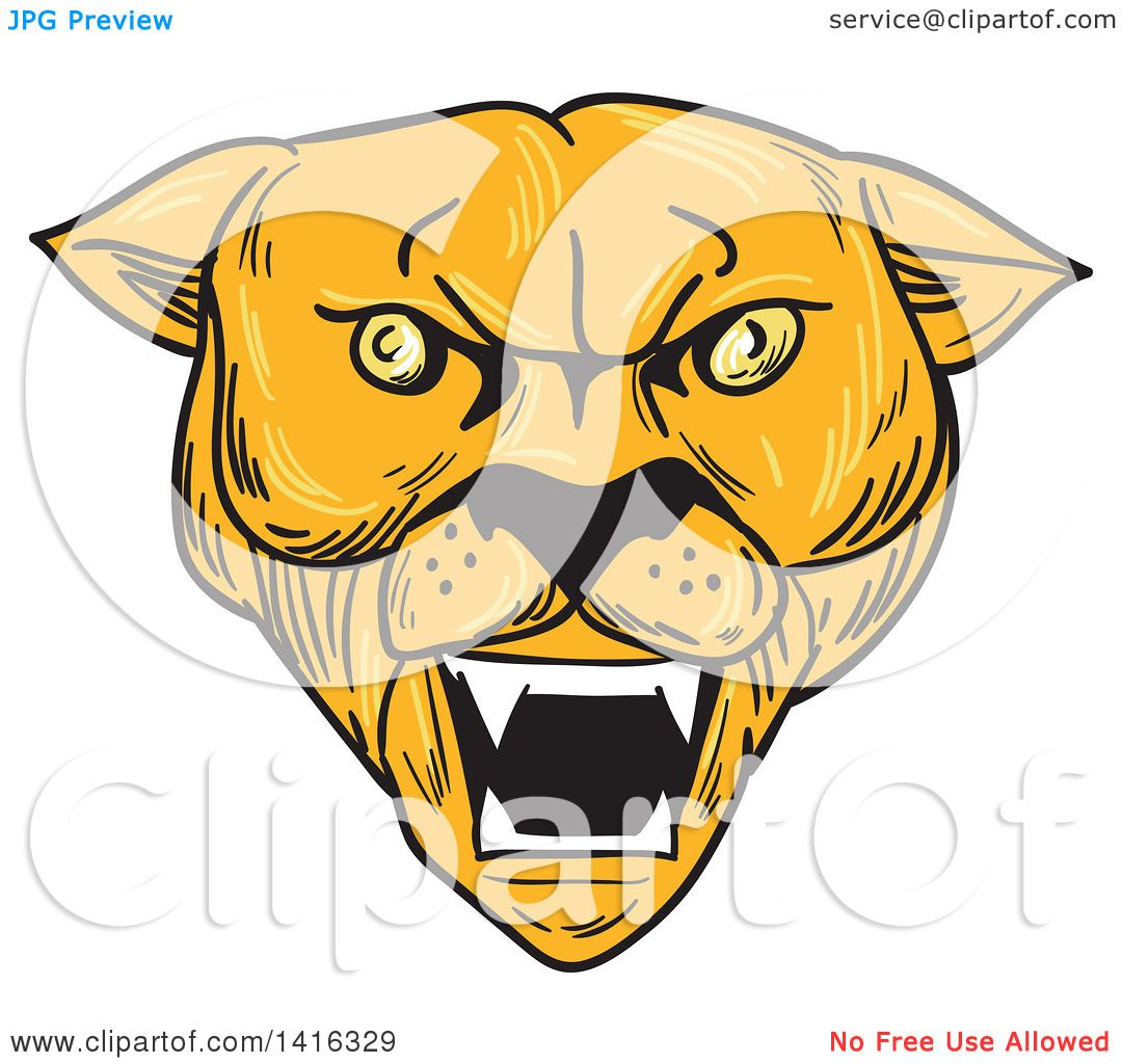 Clipart of a Sketched Angry Cougar Puma Mountain Lion Head ...